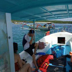 Manta Snorkeling