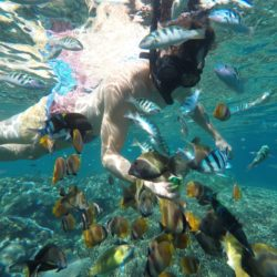 Mangrove point Nusa Penida Bali