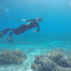 penida snorkeling